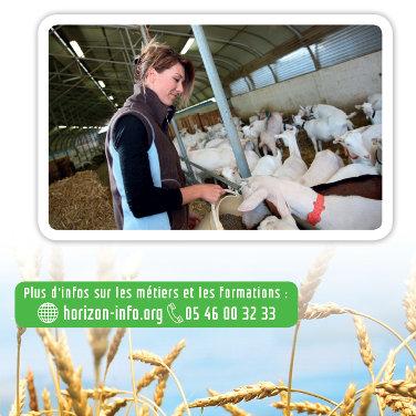 Exposition sur les métiers de la production agricole