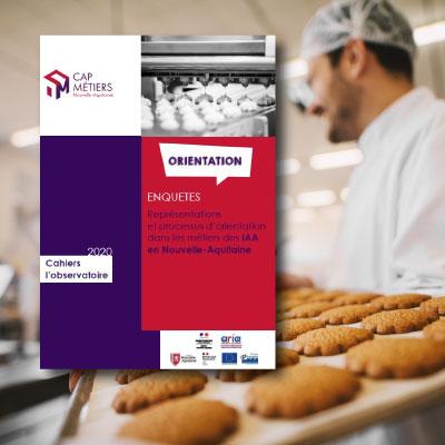 Représentations et processus d'orientation dans les métiers des industries agroalimentaires