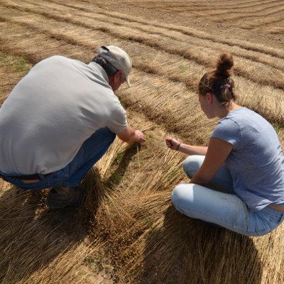 Formations biqualifiantes dans l'enseignement agricole