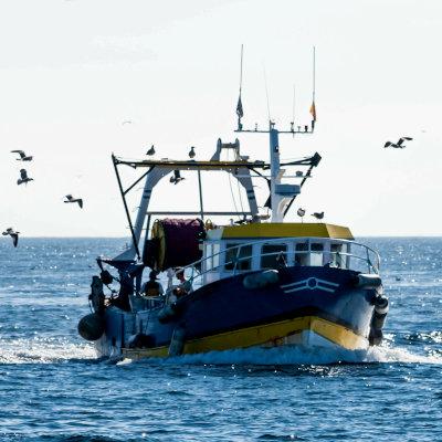 Observation, mise en situation professionnelle et travail des mineurs à bord des navires