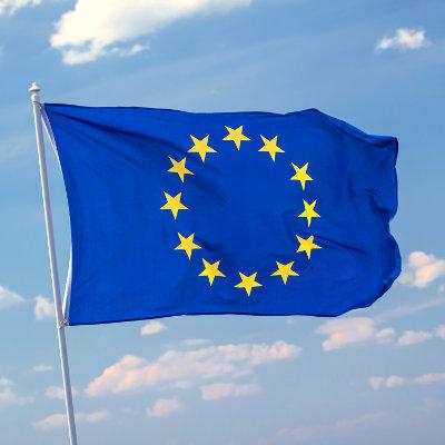 La stratégie européenne des compétences pour une compétitivité durable, l'équité sociale et la résilience