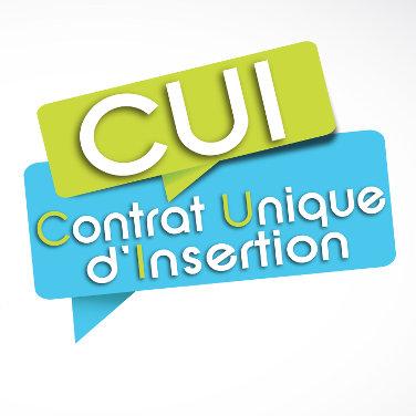 L'aide de l'Etat pour les CIE/CAE en Aquitaine Limousin Poitou-Charentes