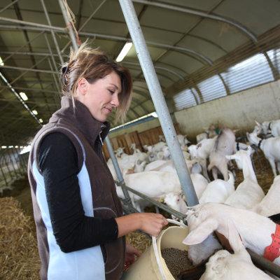 La semaine des métiers de l'agriculture en Nouvelle-Aquitaine