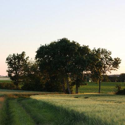 Un Cluster ruralité en Nouvelle-Aquitaine