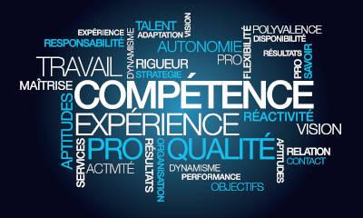 Rapport sur les emplois et compétences en France