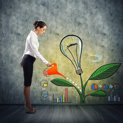 Guides pour les créateurs d'entreprise