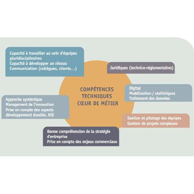 Illustration domaine Compétences et besoins de l'économie